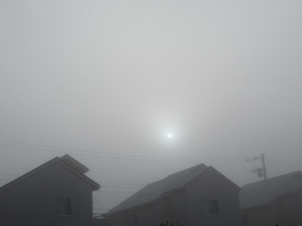 真っ白な朝