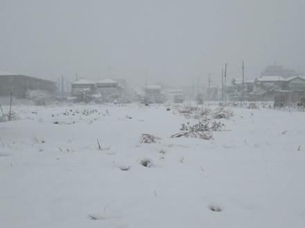 いきなり雪景色