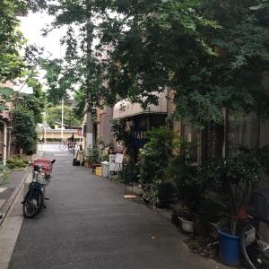 2017入谷 (2)