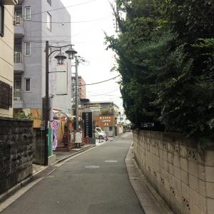 2017朝霞 (21)