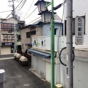 2017菊名 (5)