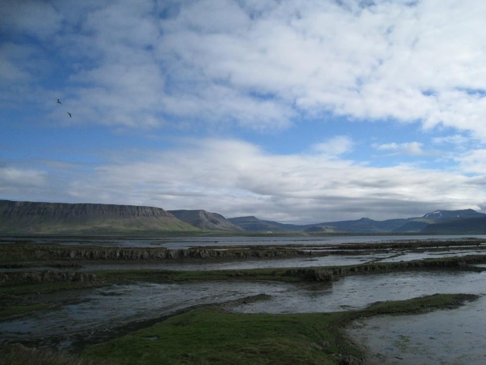 V-fjord2.jpg