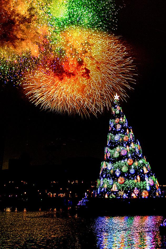 スターブライト・クリスマス1