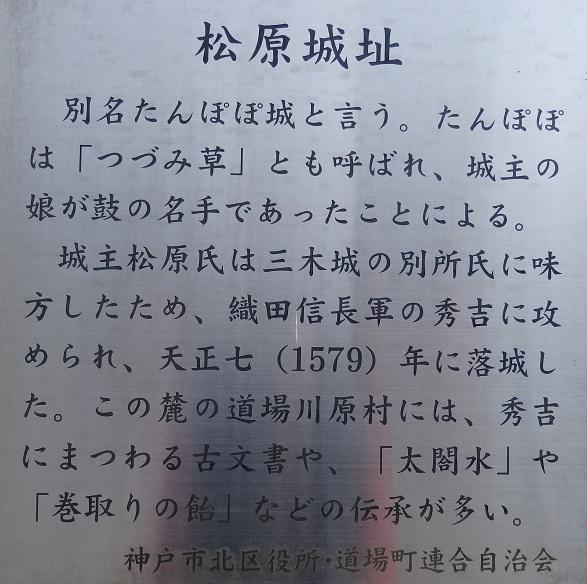 P2240058.jpg