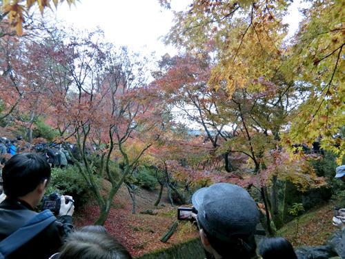 東福寺、その4!