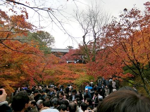 東福寺、その3!