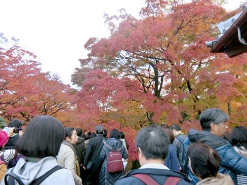 東福寺、その2!