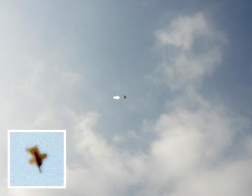 戌ヒコーキ、飛んでるトコ。 その1