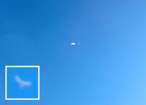 非対称無尾翼機。