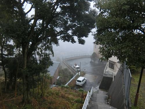 霧のお散歩に。