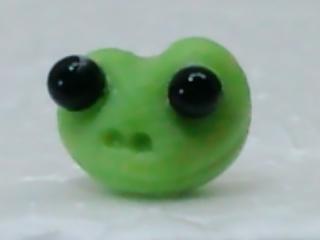 デカ目のカエル 頭