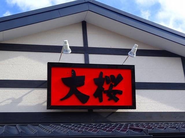 大桜 (1)