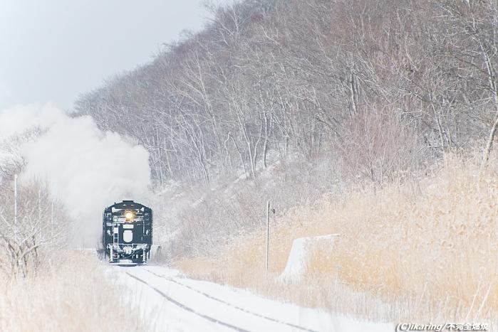 釧網本線 C11