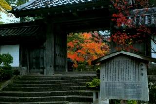 171108saimyoji-jingoji-(4).jpg