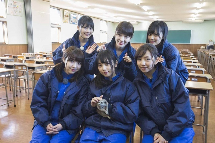 乃木坂46のガクたび! 動物専門学校4