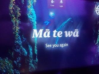 matewa2017825.jpg