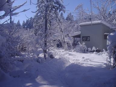 冬2018-1