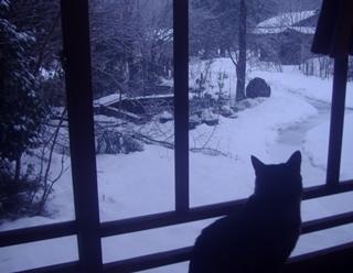 冬景色2018-1