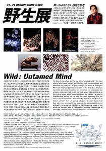 野生展:飼いならされない感覚と思考-2