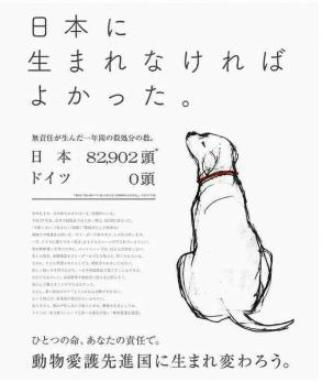ペット犬猫殺処分日本
