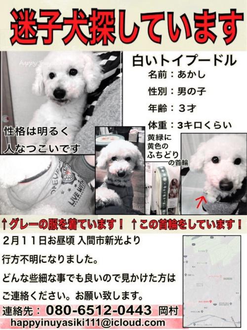 迷子ポスター_180212_0002-500