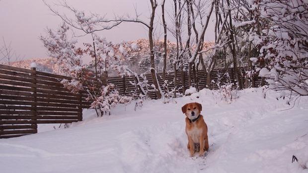 らくと雪景色