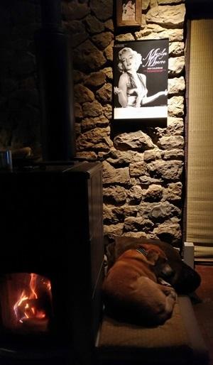 夜、スポッライトに照らされるマリリンモンローのカレンダーと石壁