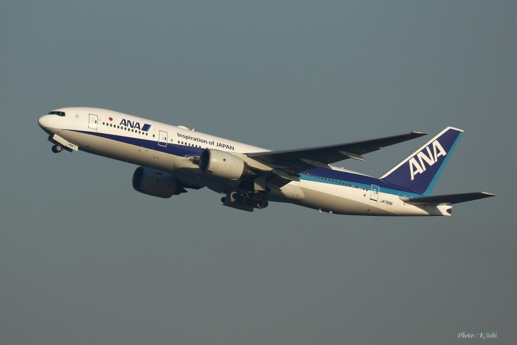 C-1029.jpg