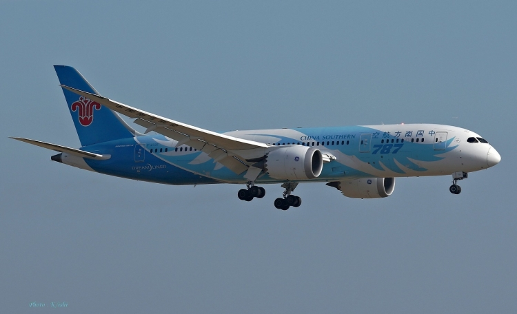 C-1039.jpg