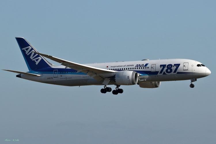 C-1051.jpg
