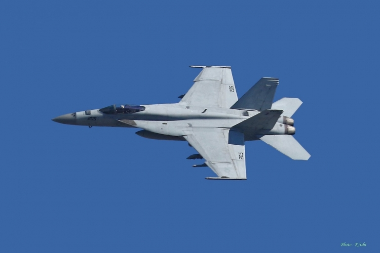 C-1074.jpg