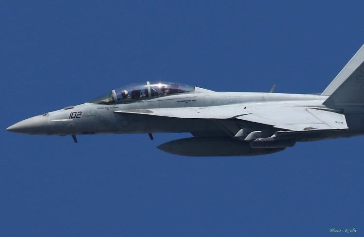 C-1118.jpg