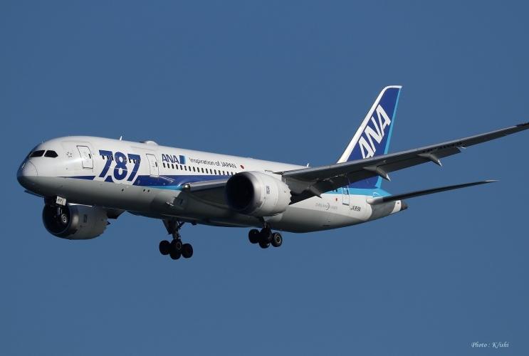 C-1294.jpg