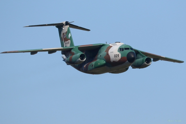 C-876.jpg