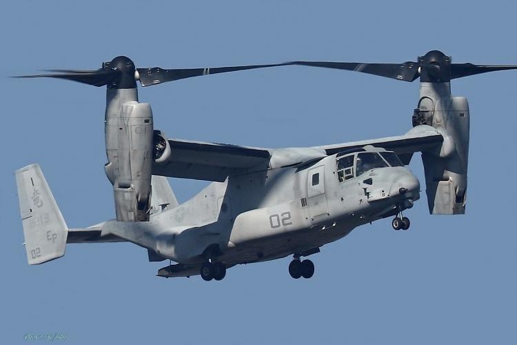 C-995.jpg