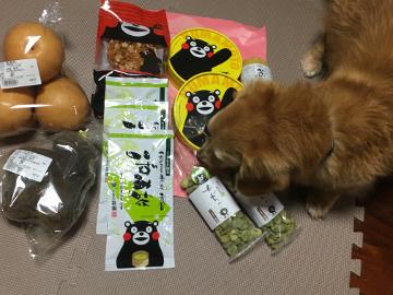 ふれあいの旅熊本16