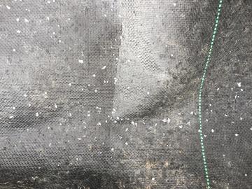 シートの下にモグラ穴5