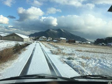 雪の農園5