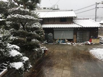 また雪が積もったよ