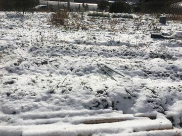 また雪が積もったよ7
