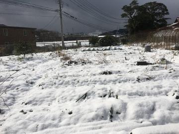 雪、畑はいっぱい3