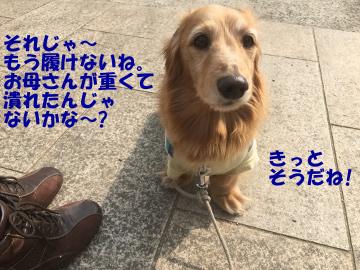 カーテン取替9