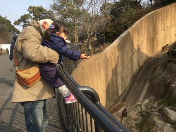 到津の森公園2