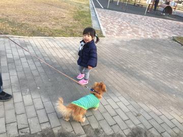 到津の森公園12