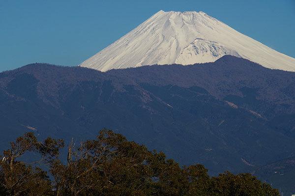 香貫山展望台から富士山