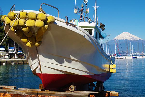 伊豆西浦の漁船と富士