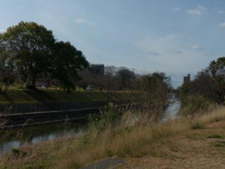 石手川緑地の風景 1
