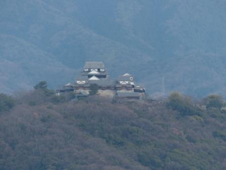 松山総合公園からの眺望 松山城 2