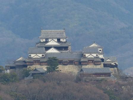 松山総合公園からの眺望 松山城 3