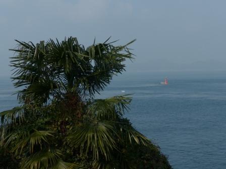 大角海浜公園 風景 6